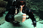 Sidemount Lessons for Rebreather Divers